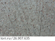 Купить «Background from concrete with impregnations from red granite gravel with an uneven surface», фото № 26907635, снято 9 сентября 2017 г. (c) Anatoly Timofeev / Фотобанк Лори