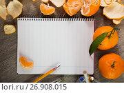 Купить «Notebook surrounded by fruit», фото № 26908015, снято 10 декабря 2018 г. (c) Яков Филимонов / Фотобанк Лори