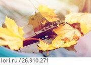 Купить «close up of car wiper with autumn leaves», фото № 26910271, снято 12 октября 2016 г. (c) Syda Productions / Фотобанк Лори