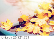 Купить «close up of car wiper with autumn leaves», фото № 26921751, снято 12 октября 2016 г. (c) Syda Productions / Фотобанк Лори