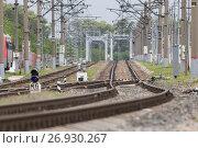 Купить «Railway tracks and bridge on crushed stone, telephoto», фото № 26930267, снято 9 сентября 2017 г. (c) Константин Шишкин / Фотобанк Лори
