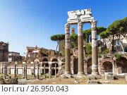 Купить «Вид на Римский форум в Риме. Италия», фото № 26950043, снято 14 сентября 2017 г. (c) Наталья Волкова / Фотобанк Лори