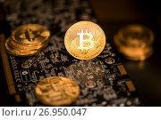 Купить «Золотые монеты криптовалюты Биткоин лежат на плате видеокарты для майнинга», фото № 26950047, снято 16 сентября 2017 г. (c) Николай Винокуров / Фотобанк Лори