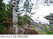Купить «Деревянный идол на скале», фото № 26950607, снято 19 июля 2017 г. (c) Яковлев Сергей / Фотобанк Лори