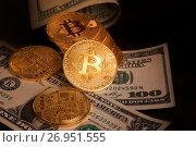 Купить «Золотые монеты криптовалюты Биткоин лежат на сто-долларовых купюрах», фото № 26951555, снято 16 сентября 2017 г. (c) Николай Винокуров / Фотобанк Лори