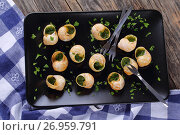 Купить «Snails with herbs butter garlic, top view», фото № 26959791, снято 30 июля 2017 г. (c) Oksana Zh / Фотобанк Лори