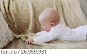 Купить «lovely baby boy on sofa at home», видеоролик № 26959931, снято 6 сентября 2017 г. (c) Syda Productions / Фотобанк Лори