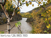 Горная река на Камчатке осенью. Стоковое фото, фотограф А. А. Пирагис / Фотобанк Лори