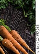 Купить «Freshly grown carrots», фото № 26983623, снято 17 июля 2016 г. (c) Jan Jack Russo Media / Фотобанк Лори