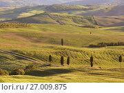 Купить «Tuscany sunset hill landscape», фото № 27009875, снято 5 мая 2017 г. (c) Михаил Коханчиков / Фотобанк Лори
