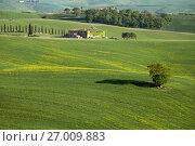 Купить «Tuscany farmland hill fields in Italy», фото № 27009883, снято 4 мая 2017 г. (c) Михаил Коханчиков / Фотобанк Лори