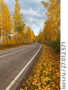 Купить «Осенний листопад. Желтые листья на обочине лесной дороги», фото № 27012571, снято 25 сентября 2017 г. (c) Виктория Катьянова / Фотобанк Лори