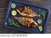 Купить «roasted sea bream fish with lemon», фото № 27014931, снято 5 августа 2017 г. (c) Oksana Zh / Фотобанк Лори