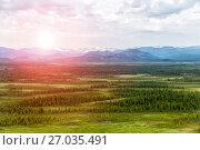 Купить «Northern landscape. Endless forests. Impenetrable swamps in the north», фото № 27035491, снято 13 июля 2017 г. (c) Евгений Ткачёв / Фотобанк Лори