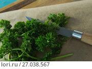 Купить «Coriander leaves, wax paper and knife on chopping board», фото № 27038567, снято 5 июня 2017 г. (c) Wavebreak Media / Фотобанк Лори