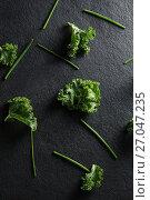 Купить «Fresh kale on slate», фото № 27047235, снято 12 июня 2017 г. (c) Wavebreak Media / Фотобанк Лори