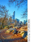 Купить «Central park at autumn morning», фото № 27059955, снято 3 декабря 2015 г. (c) Sergey Borisov / Фотобанк Лори
