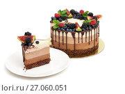 Купить «A piece of triple chocolate mousse cake on white plate», фото № 27060051, снято 27 сентября 2017 г. (c) Юлия Кузнецова / Фотобанк Лори
