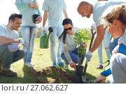 Купить «group of volunteers planting tree in park», фото № 27062627, снято 7 мая 2016 г. (c) Syda Productions / Фотобанк Лори