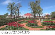 Купить «Солнечный майский день у дворца Монплезир. Петергоф», видеоролик № 27074375, снято 30 мая 2017 г. (c) Виктор Карасев / Фотобанк Лори