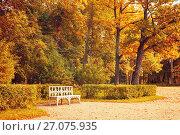 Купить «Autumn landscape. Wooden bench in the autumn park under yellowed autumn trees», фото № 27075935, снято 21 сентября 2017 г. (c) Зезелина Марина / Фотобанк Лори
