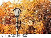 Autumn background. Metal lantern on the background of the autumn trees, фото № 27104627, снято 3 октября 2016 г. (c) Зезелина Марина / Фотобанк Лори