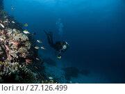 Купить «Female scuba diver swim near coral reef», фото № 27126499, снято 6 сентября 2017 г. (c) Некрасов Андрей / Фотобанк Лори