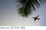 Купить «Passenger plane during landing», видеоролик № 27131743, снято 19 октября 2017 г. (c) Vladimir / Фотобанк Лори
