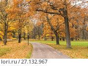 Купить «Autumn in Alexandria park, Peterhof», фото № 27132967, снято 20 октября 2017 г. (c) Юлия Бабкина / Фотобанк Лори