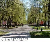 Купить «Пешеходная дорожка на Измайловском бульваре. Район Измайлово. Москва», эксклюзивное фото № 27142147, снято 7 мая 2017 г. (c) lana1501 / Фотобанк Лори