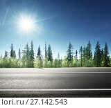 Купить «asphalt road in forest», фото № 27142543, снято 20 августа 2015 г. (c) Iakov Kalinin / Фотобанк Лори