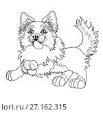 Купить «Веселый щенок Бордер Колли, контурная иллюстрация», иллюстрация № 27162315 (c) Анастасия Некрасова / Фотобанк Лори