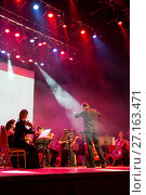"Купить «Концерт оркестра ""Другой оркестр"" Depeche Mode», фото № 27163471, снято 18 января 2019 г. (c) Евгений Ткачёв / Фотобанк Лори"