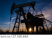 Купить «Oil pump», фото № 27165643, снято 25 октября 2016 г. (c) bashta / Фотобанк Лори