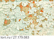 Купить «Peeling paint texture background. Light pink and turquoise peeling paint on the old concrete surface», фото № 27179083, снято 20 ноября 2017 г. (c) Зезелина Марина / Фотобанк Лори