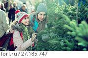 Купить «satisfied girl with mom choosing New Year's tree», фото № 27185747, снято 16 июля 2020 г. (c) Яков Филимонов / Фотобанк Лори
