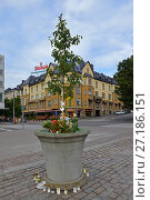 Купить «Flowers and candles in memory of victims of terrorist act that took place in Finnish city of Turku. Two people were killed and six injured in stabbing attack», фото № 27186151, снято 3 сентября 2017 г. (c) Валерия Попова / Фотобанк Лори