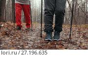 Купить «Nordic walking in autumn park - two senior ladies have training outdoor», видеоролик № 27196635, снято 25 мая 2019 г. (c) Константин Шишкин / Фотобанк Лори