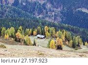 Осень в Альпах. Вид с панорамной дороги Гольдек. Каринтия, Австрия (2017 год). Стоковое фото, фотограф Bala-Kate / Фотобанк Лори