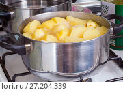 Купить «Potatoes cooked in a pot on the gas stove», фото № 27204339, снято 29 марта 2015 г. (c) Евгений Ткачёв / Фотобанк Лори