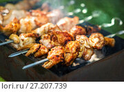 Купить «Куриные кусочки Chicken slices of shish kebab», фото № 27207739, снято 6 августа 2017 г. (c) Baturina Yuliya / Фотобанк Лори