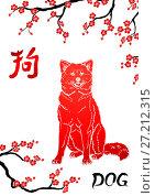 """Купить «Собака породы акита ину сидит и смотрит вперед на фоне иероглифа """"собака"""" и веток сакуры. Иллюстрация в красно-черно-белых цветах, в восточном стиле.», иллюстрация № 27212315 (c) Анастасия Некрасова / Фотобанк Лори"""