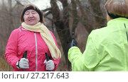 Купить «Two senior women doing exercises for neck outdoor», видеоролик № 27217643, снято 20 ноября 2019 г. (c) Константин Шишкин / Фотобанк Лори