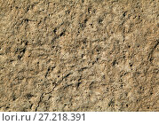 Купить «Dry clay texture», фото № 27218391, снято 8 мая 2014 г. (c) Надежда Болотина / Фотобанк Лори