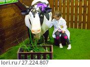 Купить «Дети играют в ферму. Минополис. Краснодар», фото № 27224807, снято 15 декабря 2015 г. (c) Марина Володько / Фотобанк Лори