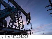 Купить «Oil pump», фото № 27234035, снято 25 октября 2016 г. (c) bashta / Фотобанк Лори