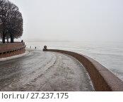 Купить «Туманный день на набережной Невы в Санкт-Петербурге», эксклюзивное фото № 27237175, снято 28 января 2017 г. (c) Александр Алексеев / Фотобанк Лори