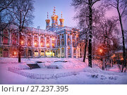 Лиловые краски зимы в Царском Селе Purple colors of winter in Tsarskoe Selo (2011 год). Редакционное фото, фотограф Baturina Yuliya / Фотобанк Лори