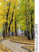 Купить «Эко парк Пехорка», фото № 27238479, снято 13 октября 2017 г. (c) Сергей Паникратов / Фотобанк Лори
