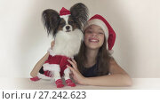 Beautiful teen girl and dog Continental Toy Spaniel Papillon in Santa Claus costumes joyfully looking around and laughing on white background stock footage video. Стоковое видео, видеограф Юлия Машкова / Фотобанк Лори